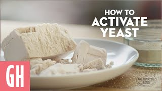 How To Activate Yeast - Beginner's Guide