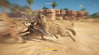Assassin's Creed  Origins #11 - Legowisko Hieny