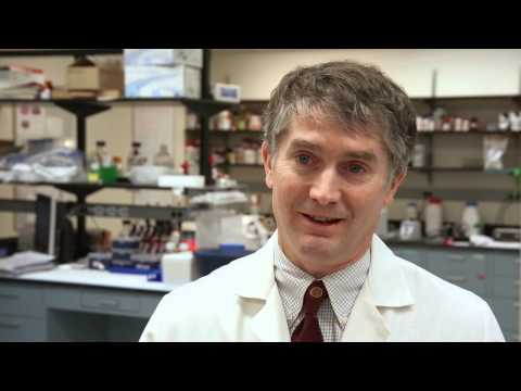 Multiple Sclerosis Research at Johns Hopkins