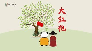 The legend of Da Hong Pao, one famous Wuyi oolong tea