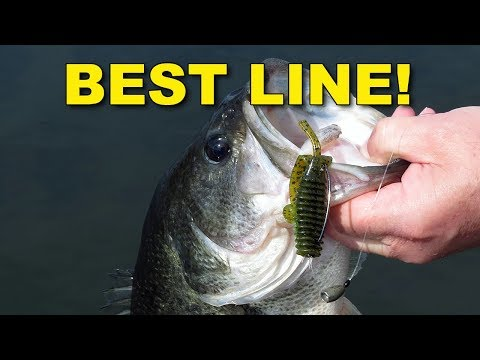 The Best Fishing Lines for Texas Rigging | Bass Fishing