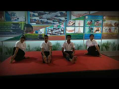 International Arogya 2017, Yoga Exhibition