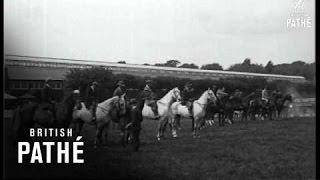 Dublin Horse Show (1922)