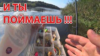 Рыбалка на реке на спиннинг Рыба ПРОСТО выпригивает из воды КАК ловить голавля