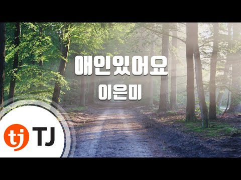 I Have A Lover 애인있어요_Lee Eun Mi 이은미_TJ노래방 (Karaoke/lyrics/romanization/KOREAN)