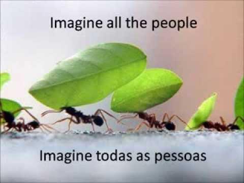 Imagine - John Lennon ( com letra e tradução )