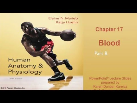 Anatomy and Physiology Chapter 17 Part B lecture: Blood