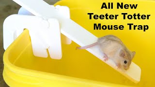 Will A Rat Eat Mice? The Teeter Totter Mouse Trap Results In A Huge Surprise. Mousetrap Monday