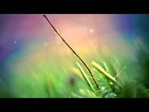 Sly One Vs Jurrane - Everything To Me (Giuseppe Ottaviani Remix) [Aly & Fila - FSOE 186]