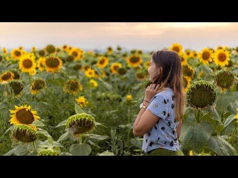 DOBROGEA - The Incredible Beauty of Romania