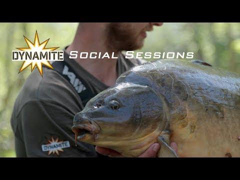 Dynamite Social Sessions Carp Fishing
