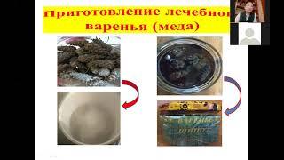 Миронова Сахая - Биология и медицина - Ботанические науки / #БОТНА