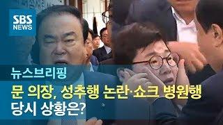 문 의장, 성추행 논란·쇼크 병원행까지…당시 상황은? / SBS / 주영진의 뉴스브리핑
