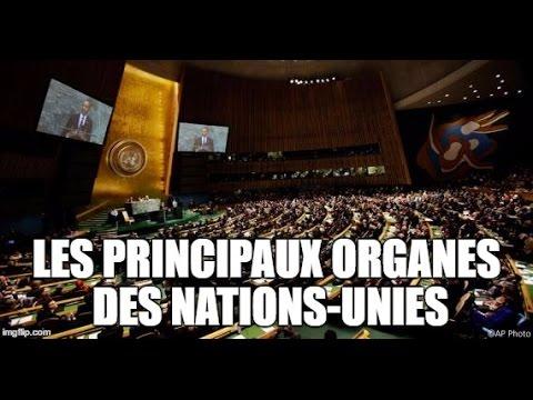 Les principaux organes des Nations-Unies