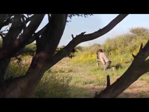 Tom In Namibia Bogen Jagd