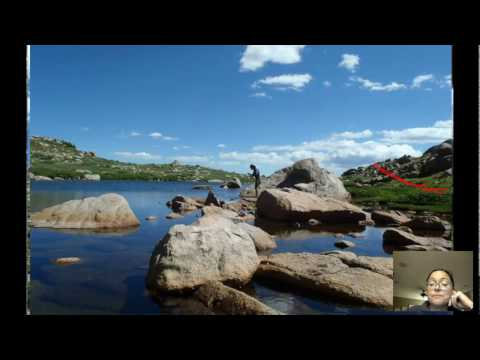 Community Ecology Video #1