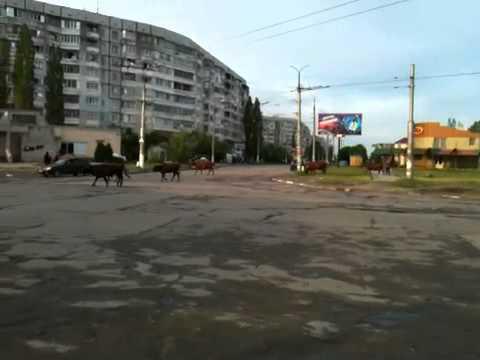 Kherson , Ukraine