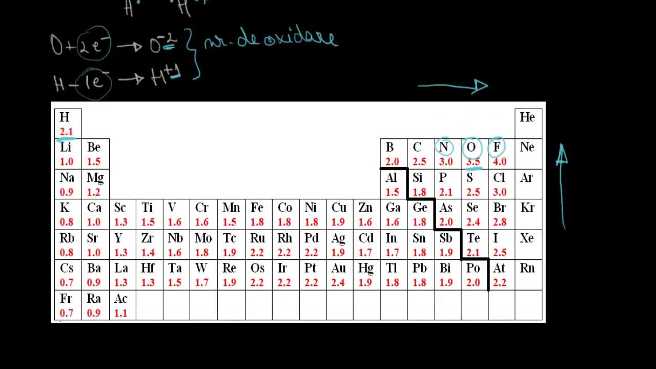 Shamanul Fizicianul | PDF