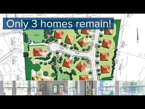 3 Homes Remain at the Reserve at Hampton Springs!