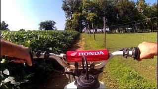 Honda XR80R Finally Running Great!!