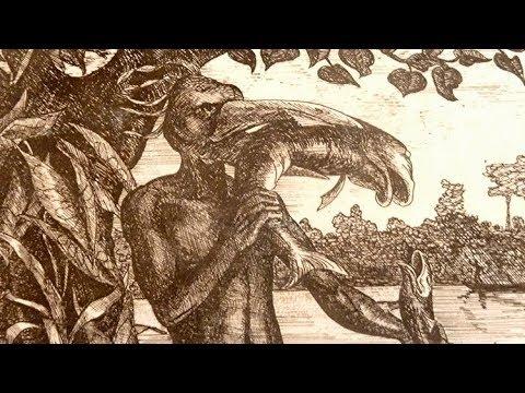 已過世的法國生物學家,在筆記中畫了三個奇怪的生物