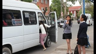 Күнчабыт | Оштогу маршруттук таксилерде окуучулардын жол киреси 5 сомго чейин көтөрүлүшү мүмкүн