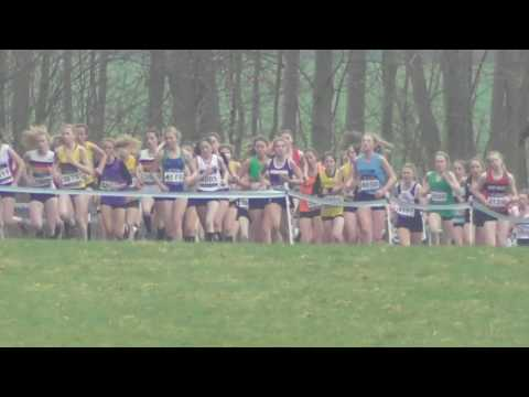 Under 15 Girls UK Inter Counties National Cross Country Championships 11032017