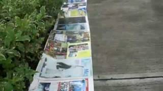 WORLD RECORDS THE LONGEST PICTURES 250 feet RENIER ATENDIDO