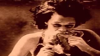 De-Phazz - Dog Run (official video)
