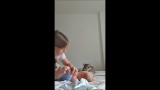 Cat Reaches Out to Baby and Touches Him Gently as He Changes His Diaper