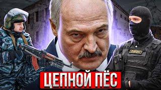 Лукашенко ПИЗ*ЕЦ / Что ждет Беларусь #Новости