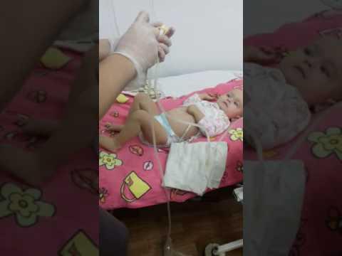 Пиелонефрит при беременности: лечение и основные симптомы