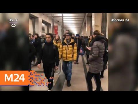 Движение поездов на оранжевой ветке метро ввели в график - Москва 24