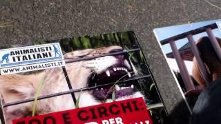 www.animalisti.it - BLITZ AMBASCIATA DANESE 1