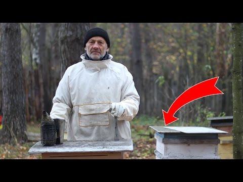 Как подготовить пчел к зиме видео