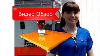 Платформенные весы ЗЕВС-Эконом. Обзор
