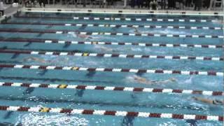 1650 yards freestyle 2010 Men's Swimming Big Ten Championships
