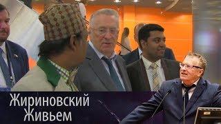 Форум «Развитие парламентаризма». Жириновский Живьем от 05.06.2018
