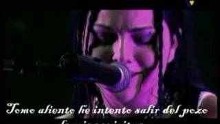 Evanescence - Breathe No More - En Vivo Subtitulado Español