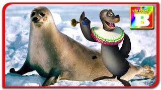 Madagascar  Animale reale vs animalele din desene animate Animalele si sunetele lor la Bogdan`s Show