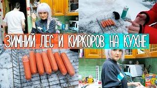VLOG Наш Выходной! Зимний ЛЕС и Киркоров на кухне! 4.12.2016