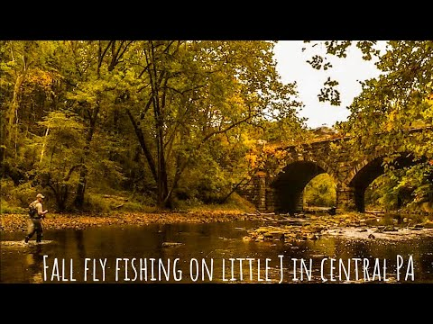 Fall Fly Fishing On The Little J In Central PA
