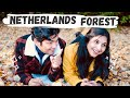 Walking In Amsterdam Forest   Autumn Colors  Netherlands Places To Visit Amsterdam Autumn Weather In