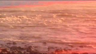 Mi canto a la tierra - poema de Elen Lackner