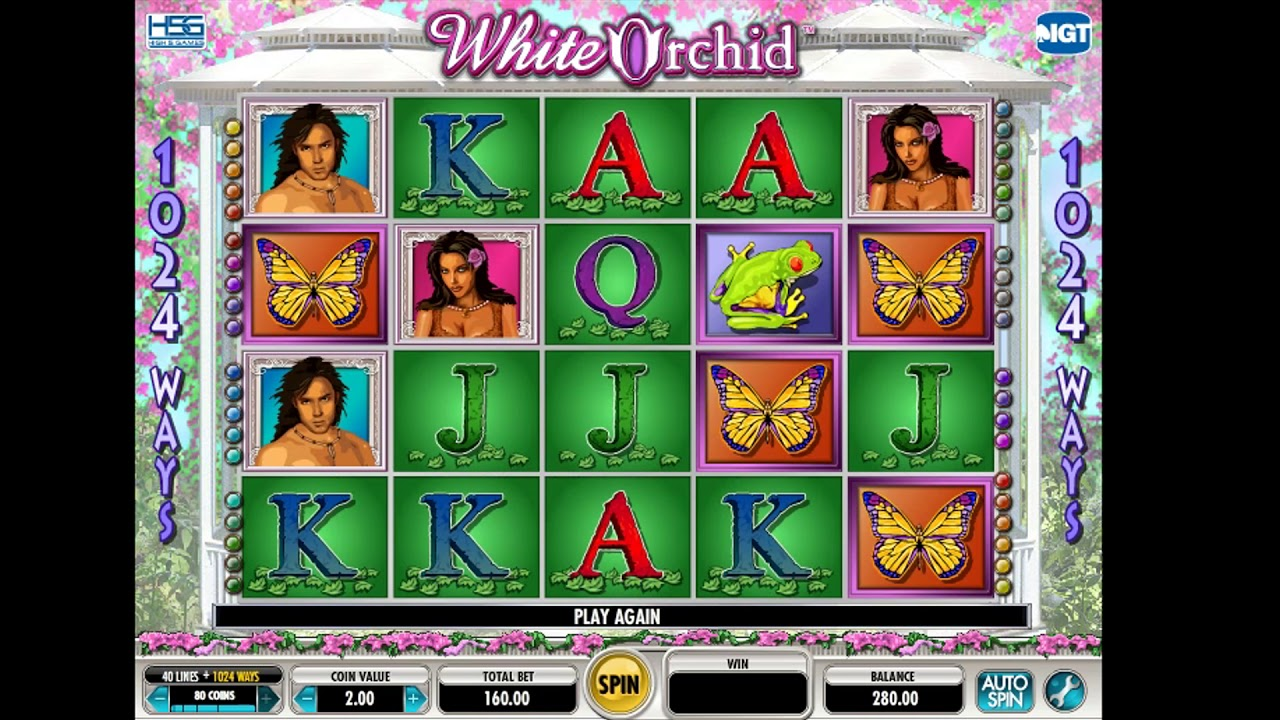 Free igt online slots machine white orchid review youtube.