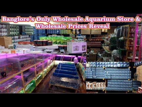 Wholesale Aquarium Store Tour Banglore Best Aquarium Store Wholesale Prices Revealed!