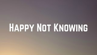 Carly Rae Jepsen - Happy Not Knowing (Lyrics)