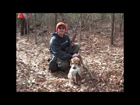 Rabbit Hunting In VA