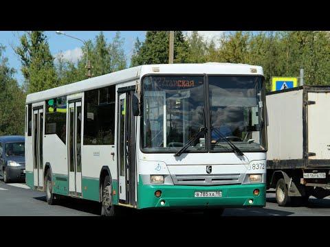 """Автобус 187 """"Пушкин, вокзал.-ул. Типанова""""."""