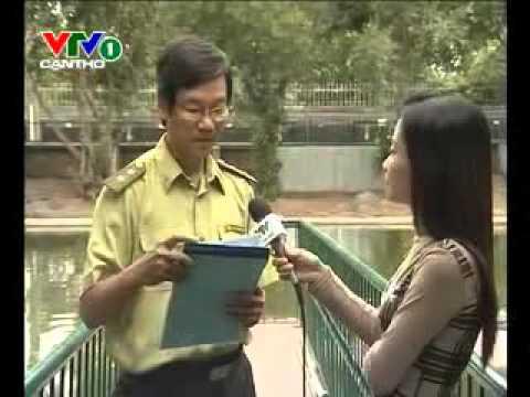 Ky thuat nuoi ca sau Phan I       Kythuatnuoitrong.com
